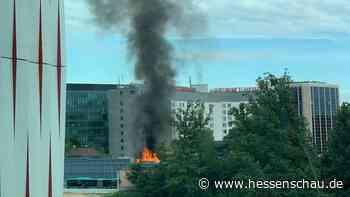 +++ Lkw brennt am Flughafen +++ Geldautomaten-Sprengung in Gründau +++ Königsnatter mischt Dillenburg auf +++ | hessenschau.de | Hessen am Morgen - hessenschau.de