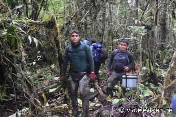Expedicionarios de ruta Moyobamba - Balsapuerto cumplieron su objetivo tras dos días de caminata - VIA Televisión