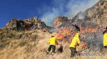 Cusco: incendio forestal en Canas y Calca consumió más de 20 hectáreas de vegetación - LaRepública.pe