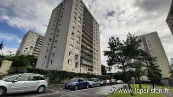 Champigny-sur-Marne : des policiers sauvent un enfant de 3 ans, penché à une fenêtre du 11e étage - Le Parisien
