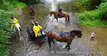 Chantonnay. 50 cavaliers à la randonnée du Gentilhomme - La Roche sur Yon.maville.com - maville.com