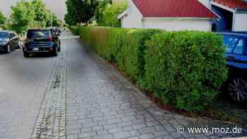 Gebühren Kosten Kommune: Einwohner von Wandlitz sollen dreifache Gebühr für die Straßenreinigung bezahlen - moz.de