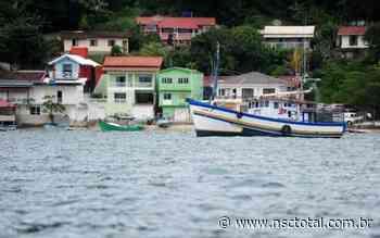 Homem é agredido a pauladas por inquilino em Porto Belo ao cobrar aluguel de casa | NSC Total - NSC Total