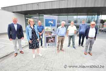 Eerste Expo Natuurfotografen Hoge Dijken geopend (Oudenburg) - Het Nieuwsblad