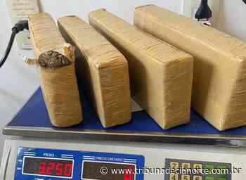 Em Cruzeiro do Oeste, Polícia Rodoviária apreende 3,25 quilos de maconha na PR-323 – Tribuna de Cianorte - Tribuna de Cianorte