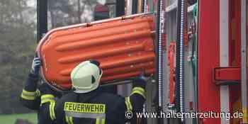 HZ+ Mit der Einrichtung der Kreisbereitschaft ist im Kreis Borken ein wichtiger Baustein gesetzt. - Halterner Zeitung