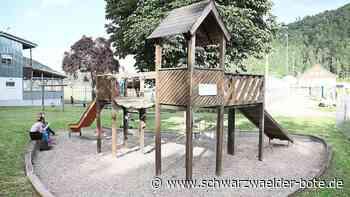 Spielplatz in Dettingen - Pirateninsel bekommt Vogelnestschaukel - Schwarzwälder Bote