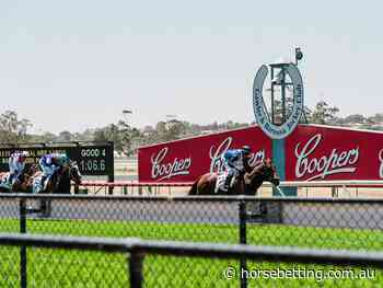 Gawler Racing Tips & Quaddie Selections | SA Preview | 10/7/2021 - Horse Betting