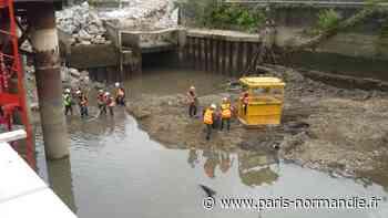 À Pont-Audemer, une opération de sauvetage de poissons a été menée - Paris-Normandie
