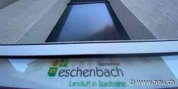 Eschenbach: Gemeinde bietet kostenlose Neophyten-Säcke - Nau.ch