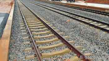 Reps probes N1.3tr Port Harcourt-Maiduguri railway line contract - Guardian Nigeria