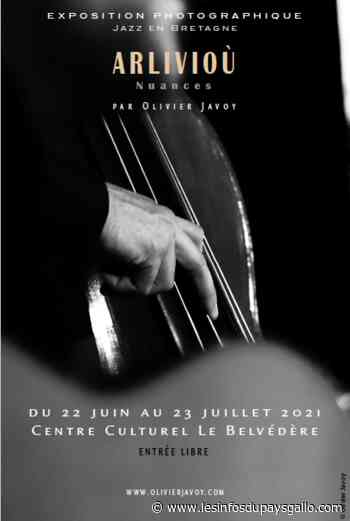 Guer. Arlivioù d'Olivier Javoy au Belvédère - Les Infos du Pays Gallo