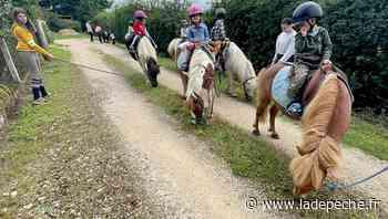 Caussade. À poney pour les petits de la crèche Chapi-Chapeau - ladepeche.fr