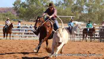 Mount Isa Campdraft gears up for a big weekend - The North West Star