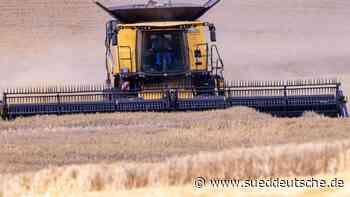 Verband: Bürokratie hemmt Umstellung auf Öko-Landwirtschaft - Süddeutsche Zeitung