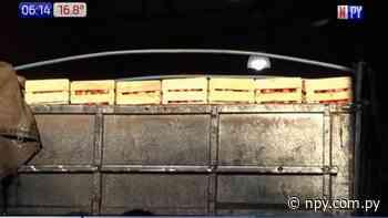 Incautan 1.500 cajas de tomate de contrabando en Fernando de la Mora   Noticias Paraguay - NPY