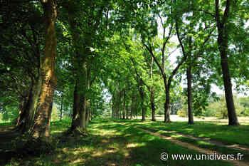 Bois et musique Arboretum de Chèvreloup - Unidivers