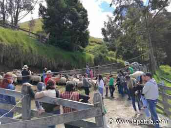 Marulanda también se reactiva: volvió el turismo - La Patria.com