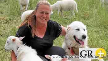 Hobbyschäfer in Liebenburg vertrauen drei Schutzhunden - Gifhorner Rundschau