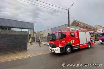 Klein brandje in Romershoven (Hoeselt) - Het Nieuwsblad