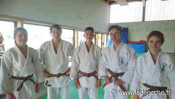 Seysses. Judo : reçus 5 sur 5 - ladepeche.fr