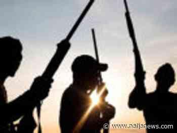 Bandits Marry Off Kidnapped School Children In Yobe State - Naija News