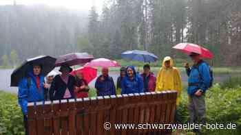 Wildberg - Regen kann Wanderern Tour nicht vermiesen - Schwarzwälder Bote