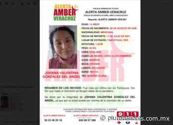 Piden ayuda para localizar a chica de 14 años desaparecida en Tantoyuca - plumas libres