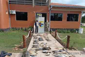 Incautan pescado sin las medidas establecidas en Ayolas - Nacionales - ABC Color