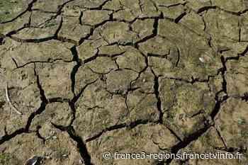 Hérault : reconnaissance de l'état de catastrophe naturelle pour Lunel et les Matelles - France 3 Régions