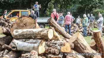 Holzauktion in Schwanewede: Bieten für Brennmaterial - WESER-KURIER - WESER-KURIER