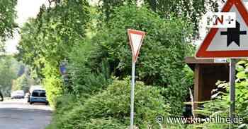 Altenholz-Knoop: Anwohner machen mobil gegen Tempo 50 - Kieler Nachrichten