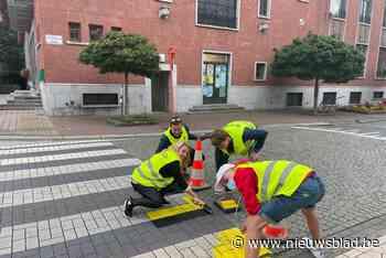 Jong Leefbaarder Zele schildert een Zeels zebrapad in de Vlaamse kleuren<BR />