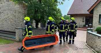 Mann tot in Gartenteich in Harsewinkel gefunden - Neue Westfälische