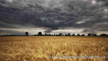 Roadmap to cut carbon emissions launched by FoodDrinkEurope