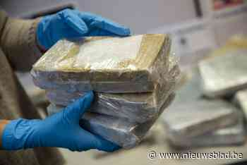 Meer dan 250 kilogram cocaïne gevonden tussen lading limoenen