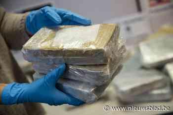 Meer dan 250 kilogram cocaïne gevonden tussen lading limoenen bij bedrijf in Sint-Katelijne-Waver