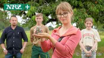 In Moers und Neukirchen-Vluyn gibt's Hilfe für den Kauz - NRZ