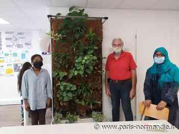 À Elbeuf, des habitants veulent végétaliser les toilettes publiques du quartier République - Paris-Normandie