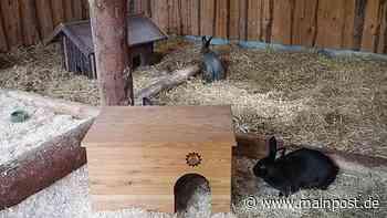 Sommerhäuser Kaninchenhaus des THW bei den Tieren beliebt - Main-Post