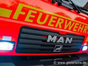 Beim Abbrennen von Unkraut: Ast fängt Feuer - GZ live Seesen - Goslarsche Zeitung