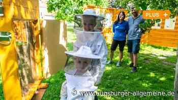 Gersthofen hat jetzt einen neuen Bienen-Lehrpfad - Augsburger Allgemeine