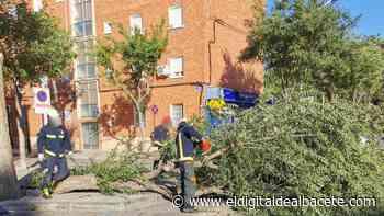 Incidente frente al Hospital Perpetuo Socorro de Albacete - El Digital de Albacete