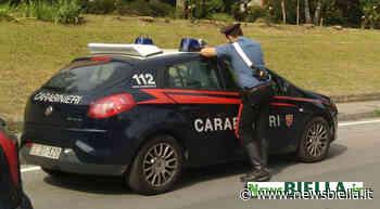 Un ferito nell'incidente di ieri a Cossato tra due auto - newsbiella.it
