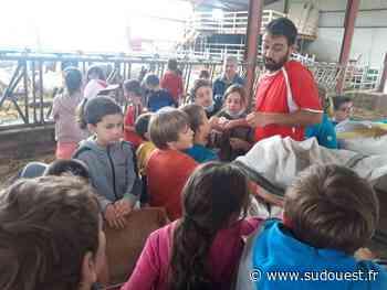 Saint-Jean-Pied-de-Port : Le lycée Frantsesenia fait le pont entre ferme et assiette lors des Journées nationales de l'agriculture - Sud Ouest