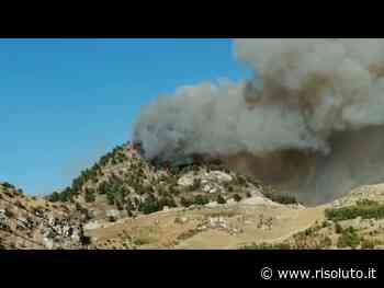 Bruciano campagne e boschi a Sambuca e Cattolica Eraclea (Video) - Risoluto