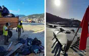 Trabalho de limpeza recolhe lixo de praia de Arraial do Cabo - O Dia