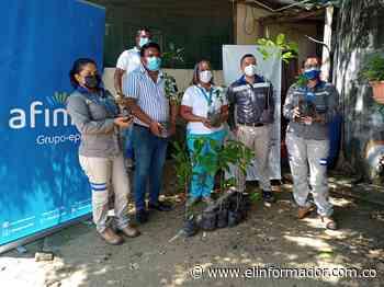 Afinia dona 500 árboles en Ariguaní y Nueva Granada en Magdalena - El Informador - Santa Marta