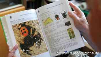 Forscher legen Spinnenatlas vor: 615 Arten im Nordosten - Süddeutsche Zeitung