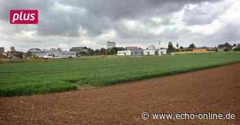 Langsam füllt sich das Gewerbegebiet in Pfungstadt - Echo Online